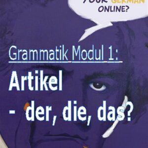 Deutsch Grammatikmodul 1 Artikel der die das
